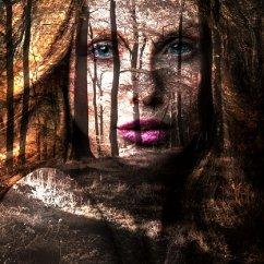 female-face-2681253_1280